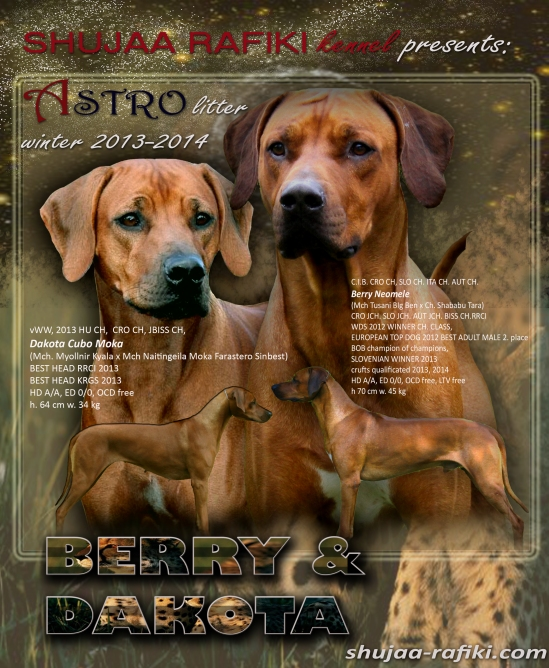 berry dakota astro litter