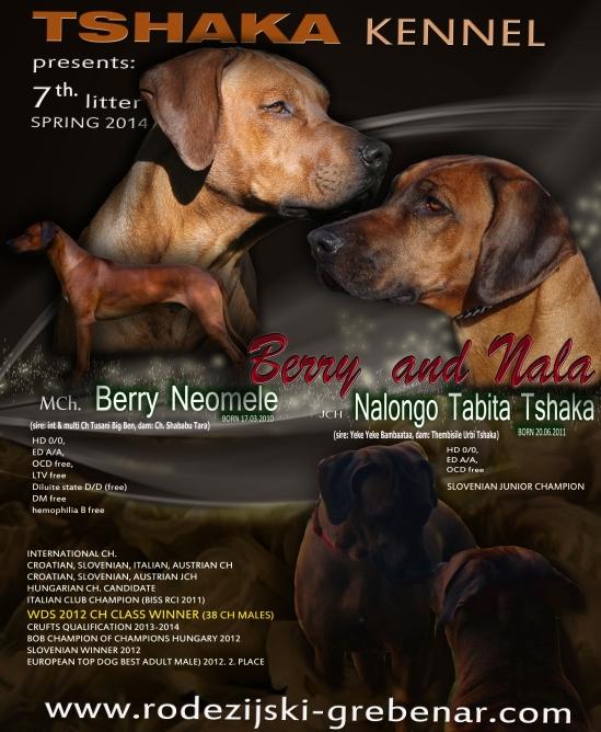 berry nala 3
