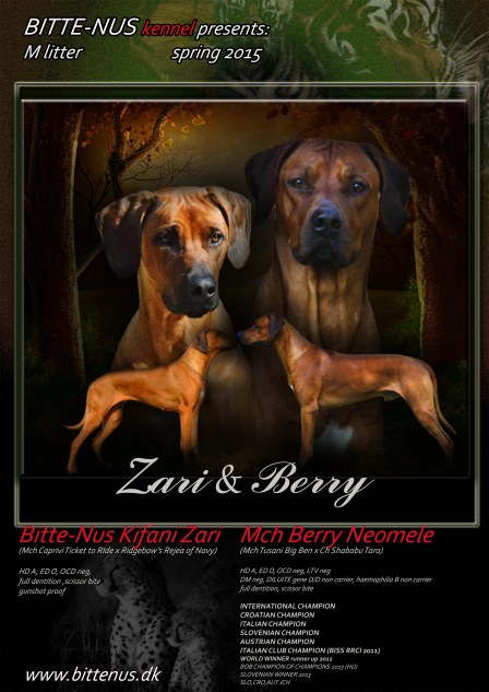 zari & berry send